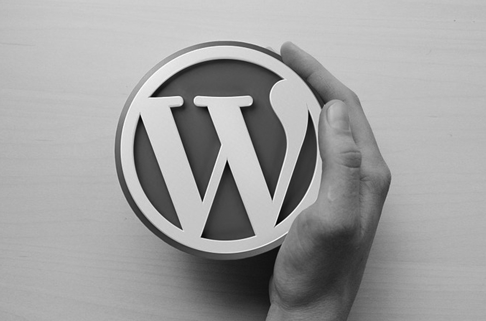 WordPress coffee cup with hand holding it